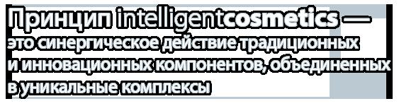 anubis-wideslide-intelligent-_03.png